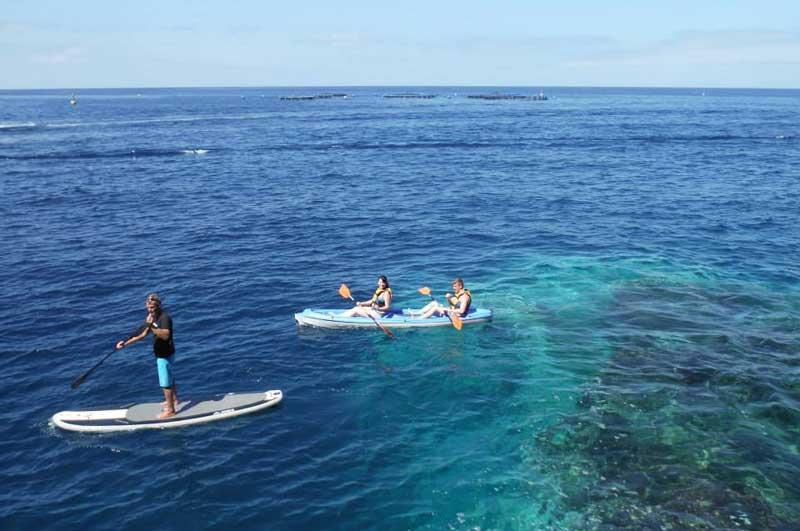 Kayak & Padel Surf