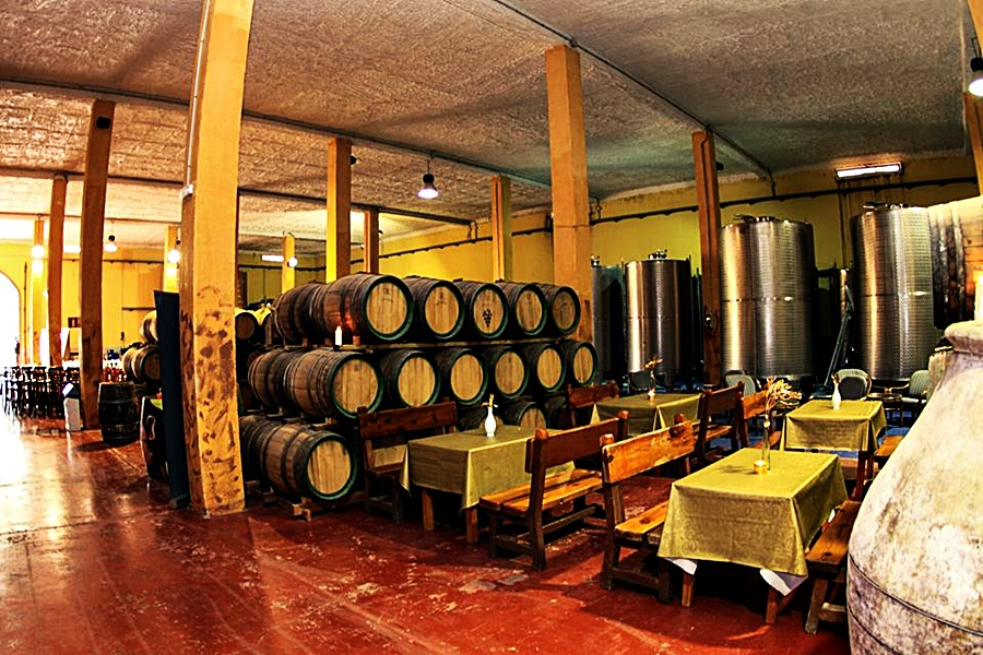 wineries of Gran Canaria