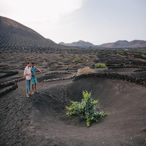 Ruta de los Vinos en Lanzarote para grupos